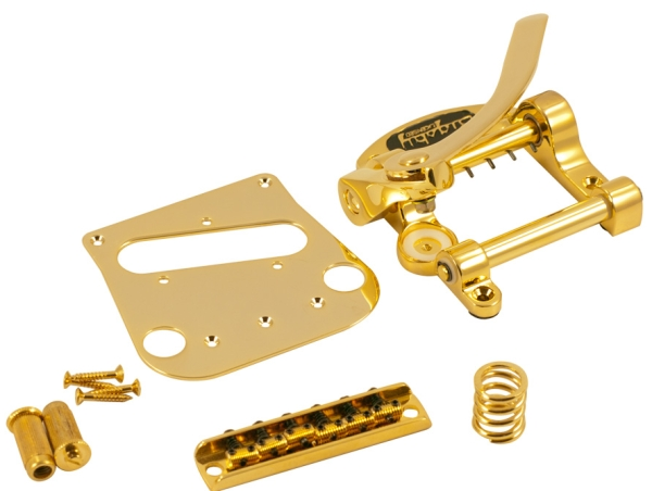Bigsby Fender Tele® Conversion Kit Gold - Bigsby